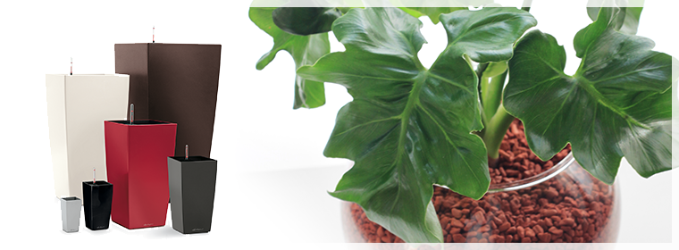 高品質な植木鉢や、水やり不要の土「セラミス」