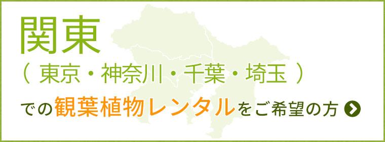 関東(東京・神奈川・千葉・埼玉)の観葉植物レンタルをご希望の方
