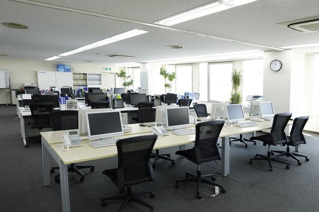 事務所に観葉植物