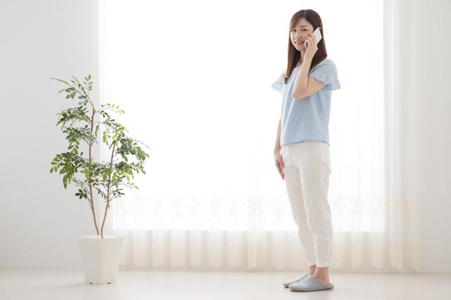 電話 観葉植物